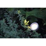 In Lite | Scope | Update | Buitenspots | 12 Volt